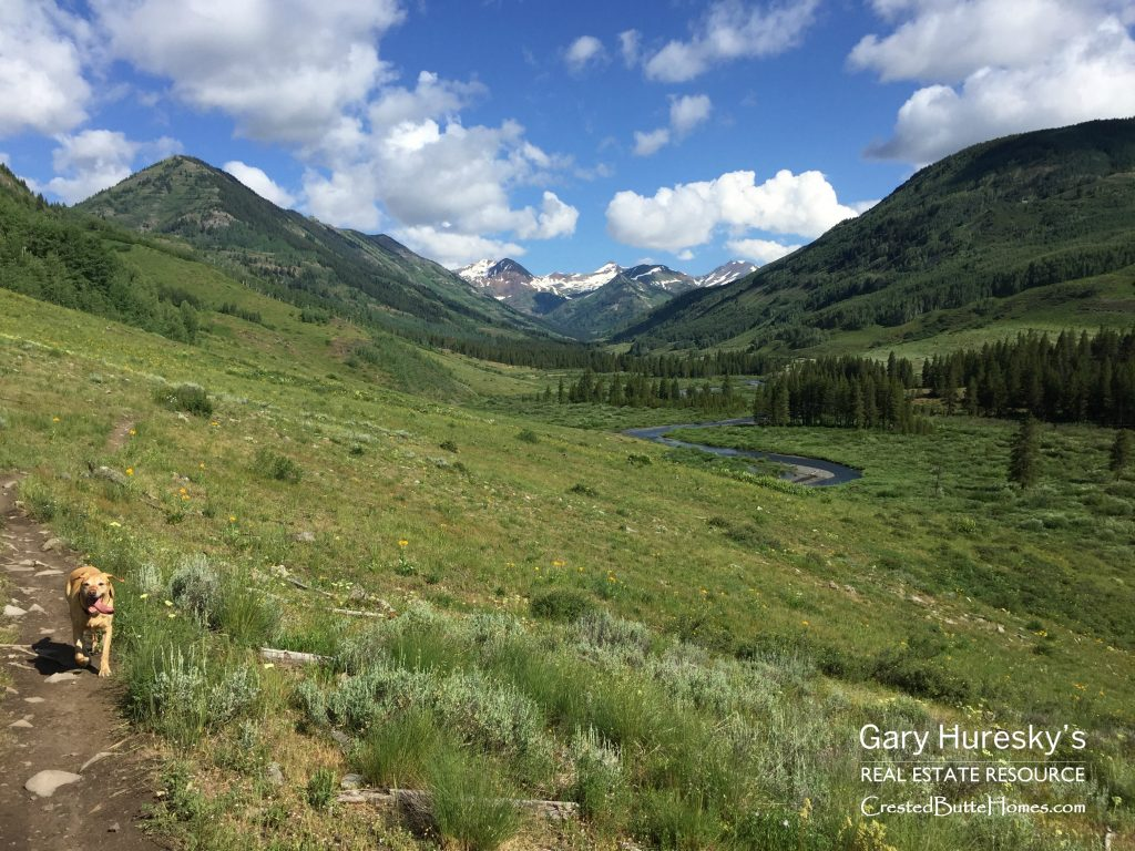 Lower Loop Crested Butte Real Estate
