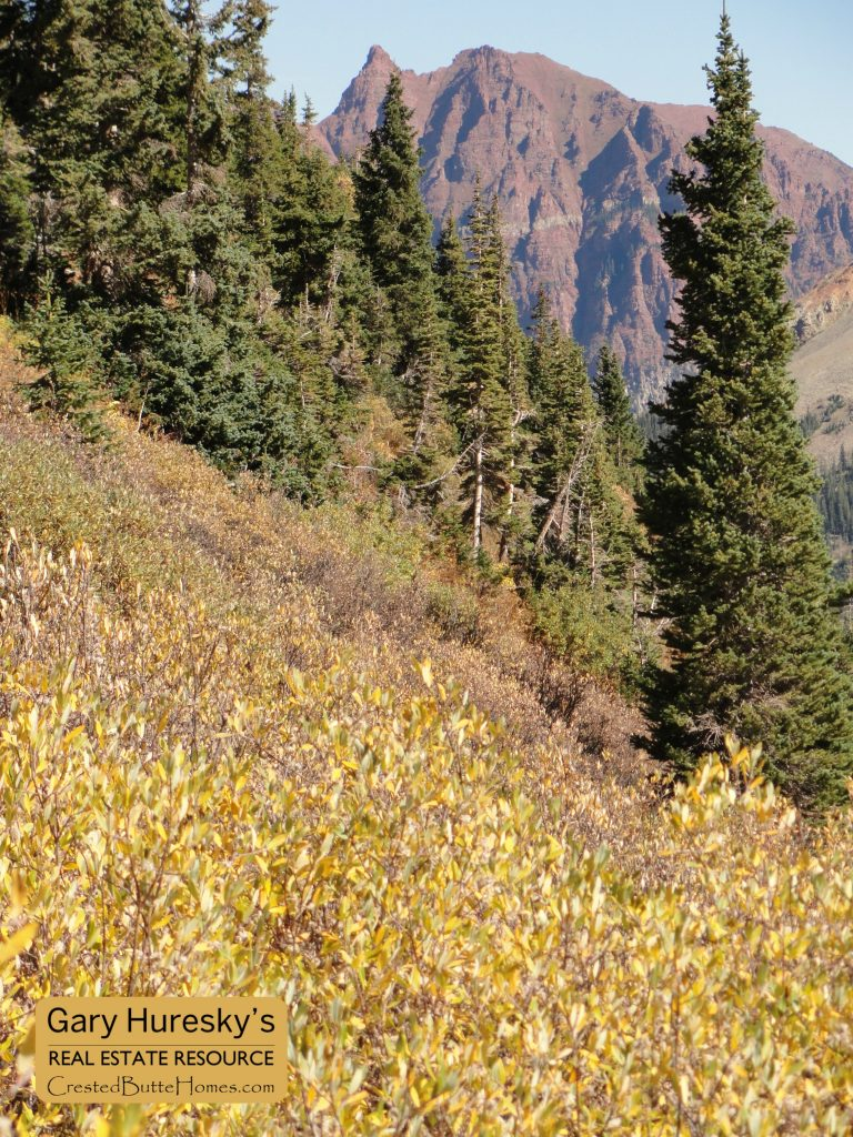 Crested Butte to Aspen Hike Sievers Mountain