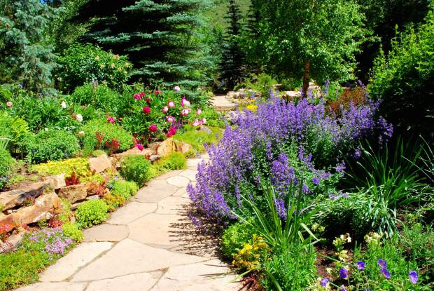 Crested Butte home staging garden