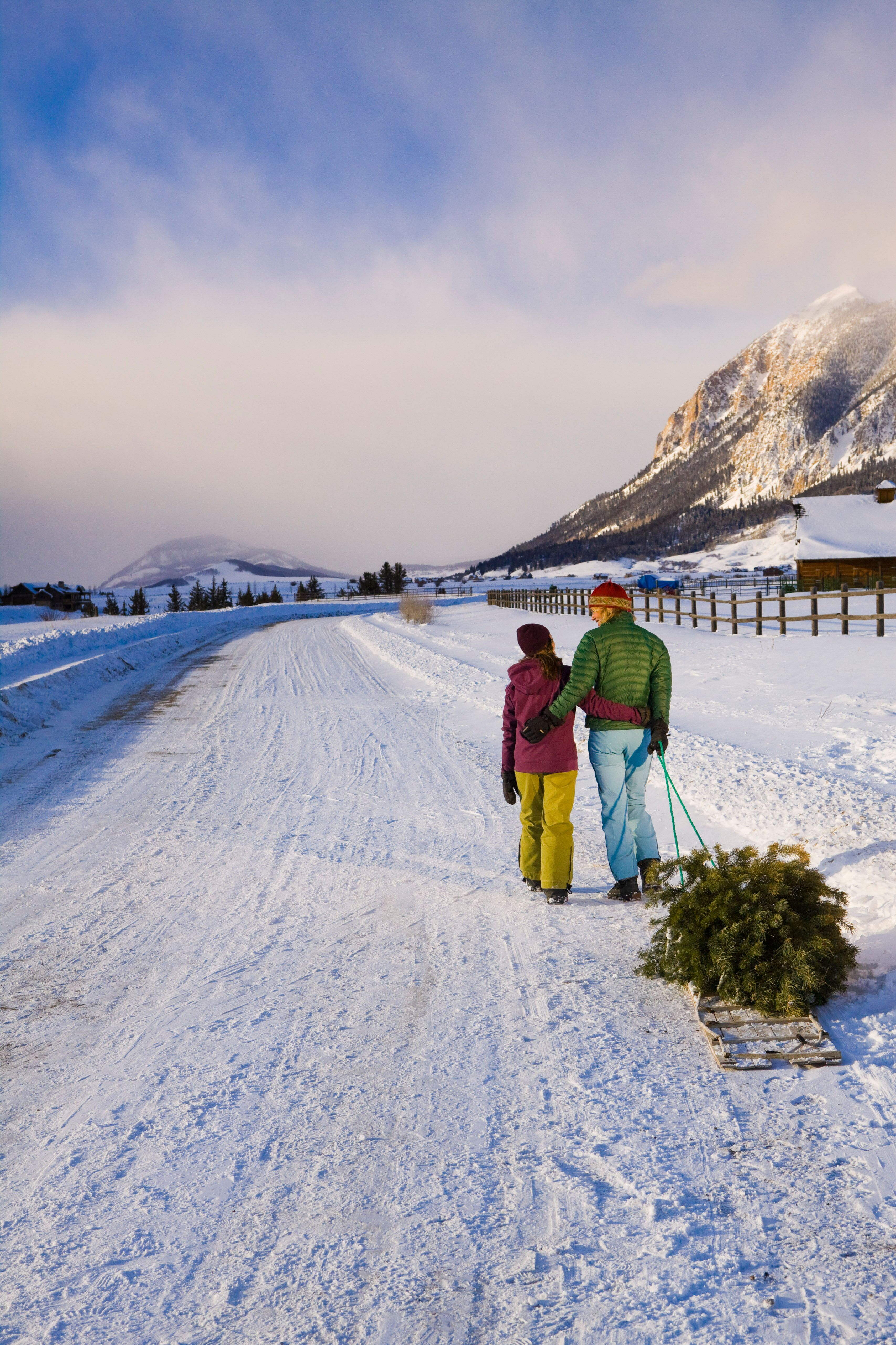 Crested Butte Christmas Tree