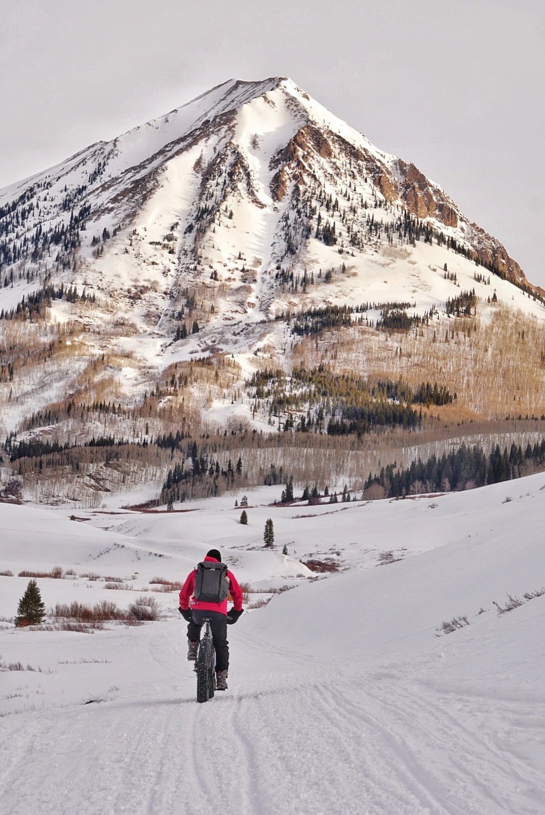 Crested Butte Fat Bike Gothic Mountain