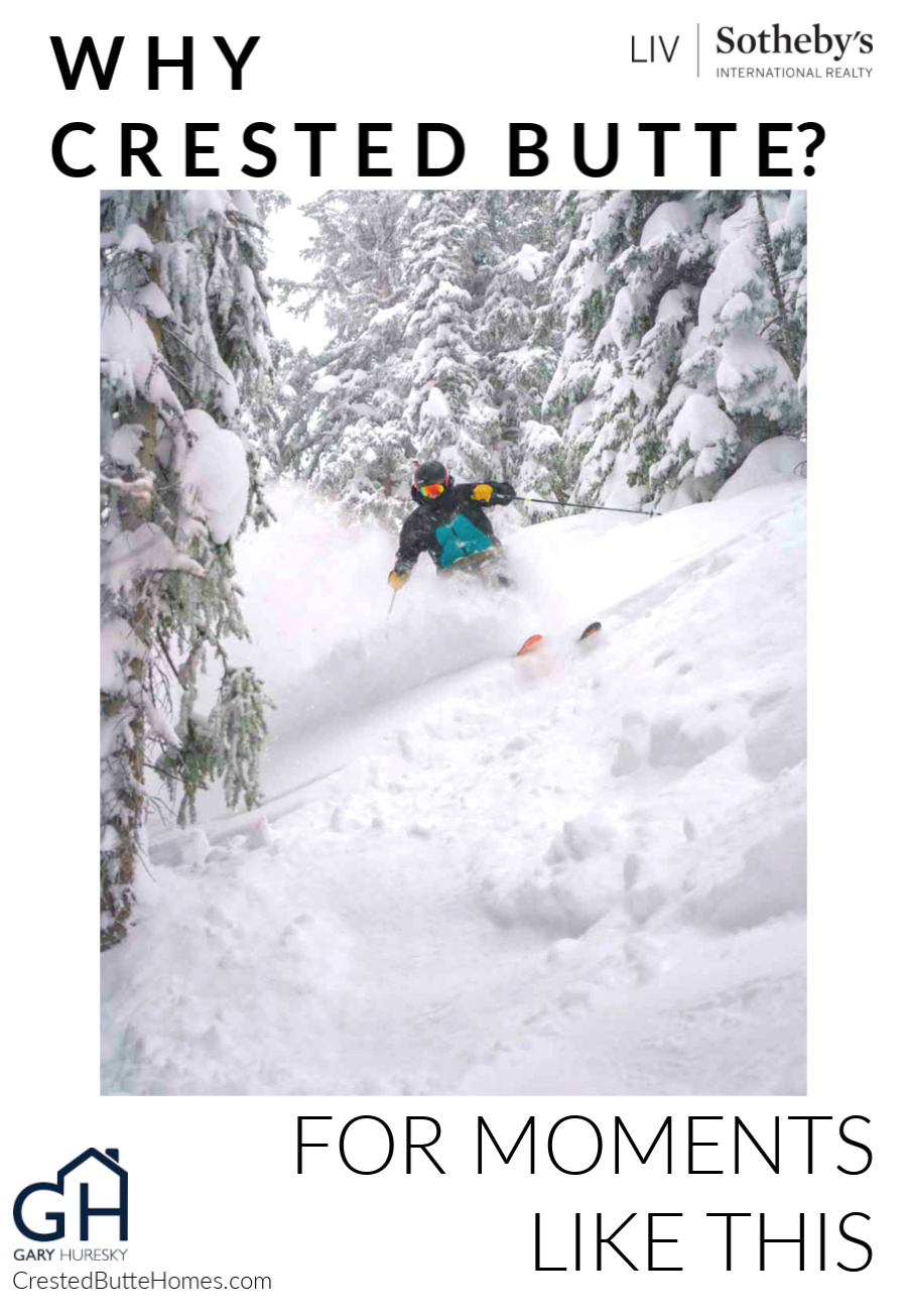 Crested Butte Powder Skier